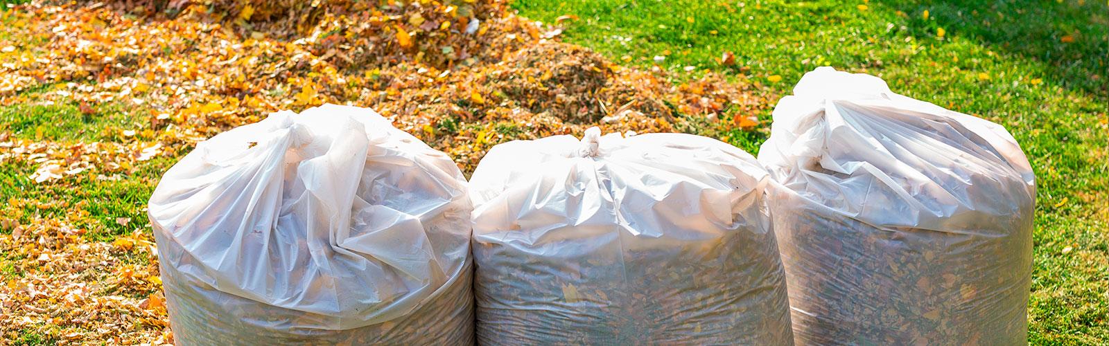 grünschnitt-laub-äste-greifswald-bäume-entsorgen